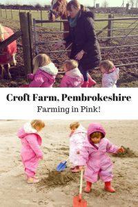 Croft Farm pembrokeshire farming in pink pin www.minitravellers.co.uk