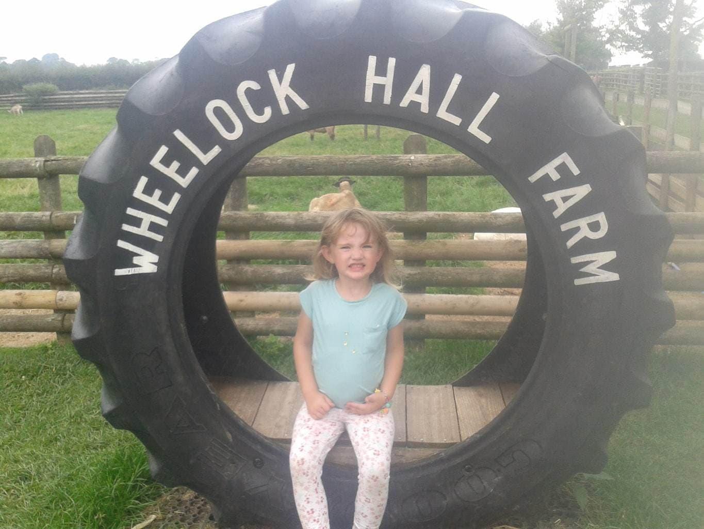 Wheelock Farm, Sandbach – A 'wheely good day out'