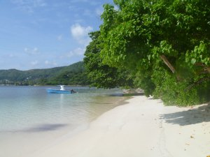 Tips for taking babies or toddlers to the Seychelles