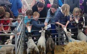 Spring Barn Farm, Lewes, Sussex