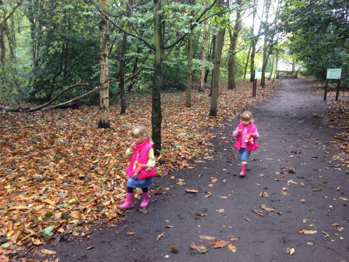 Speke Hall with Mini Travellers