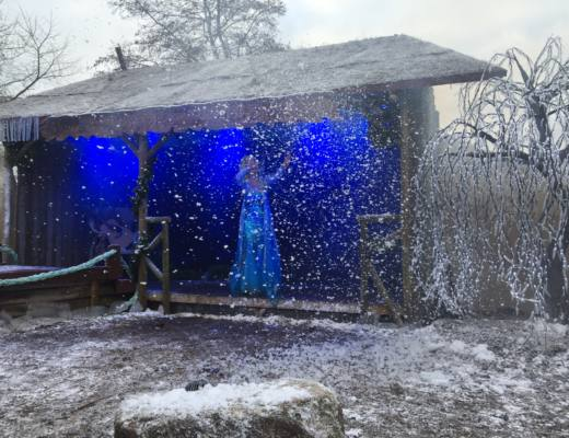 Frozen Experience