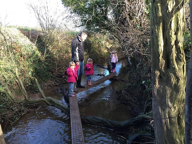 Crocky Trail Chester