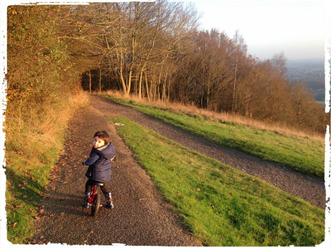 A Family Day out at Box Hill, Surrey