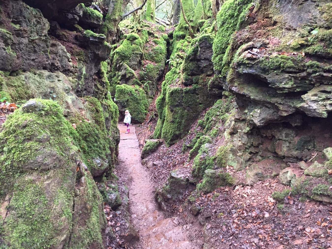 Star Wars is Filmed at Puzzlewood
