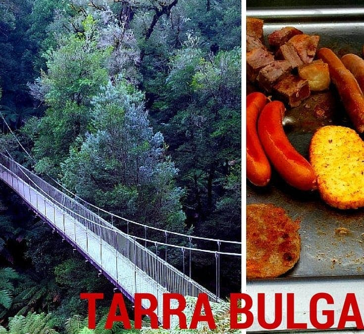Tarra Bulga Nation Park – Bush Walking and BBQ's