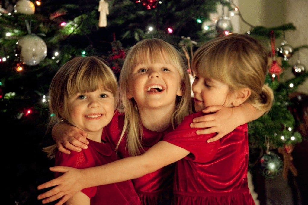 Pines & Needles Christmas Tree www.minitravellers.co.uk