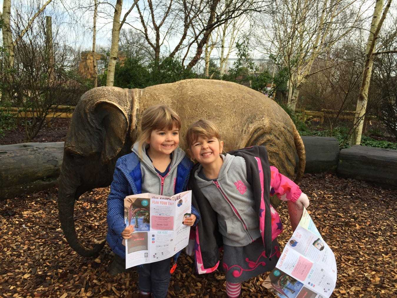 Why you should visit Chester Zoo in Winter www.minitravellers.co.uk