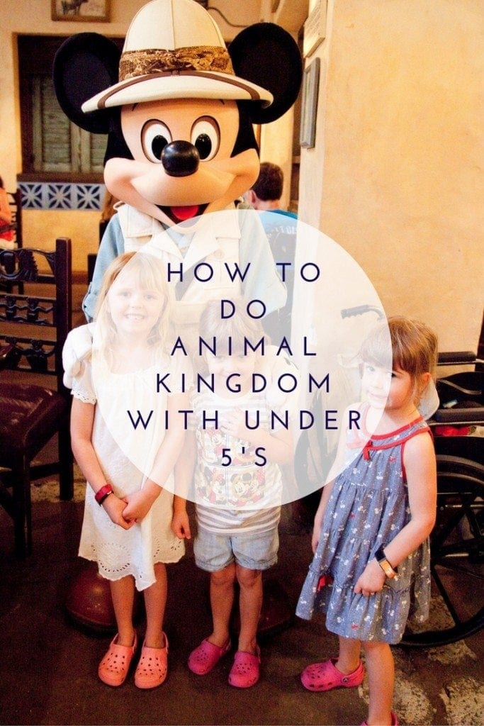 How to do Animal Kingdom with Under 5's