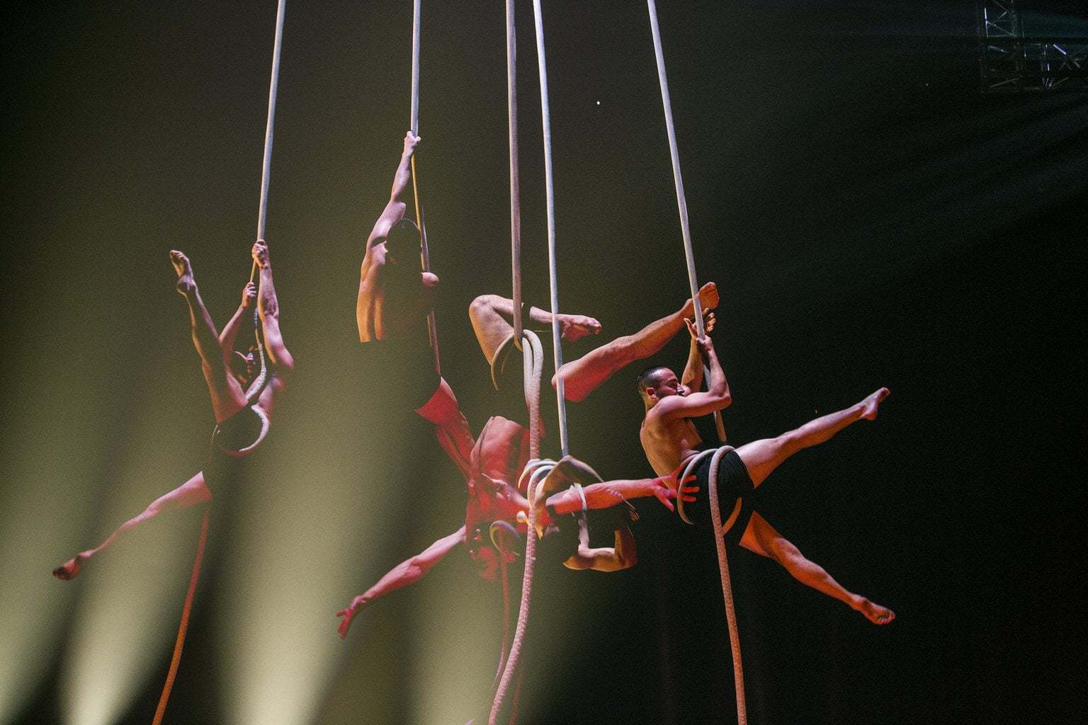Circus with Guts, Gusto and Grace