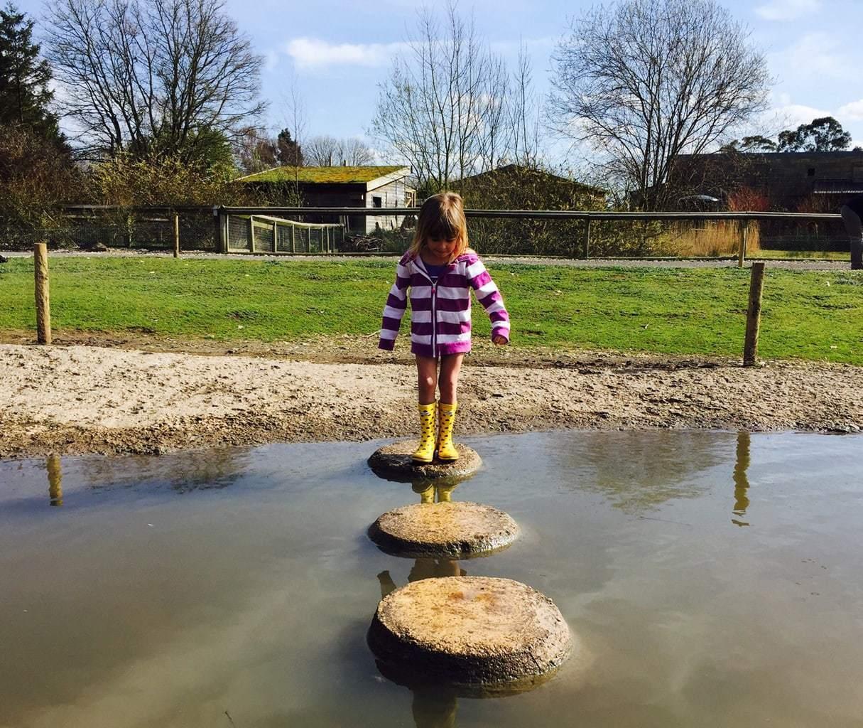 WWT Slimbridge – Slimbridge Wetland Centre