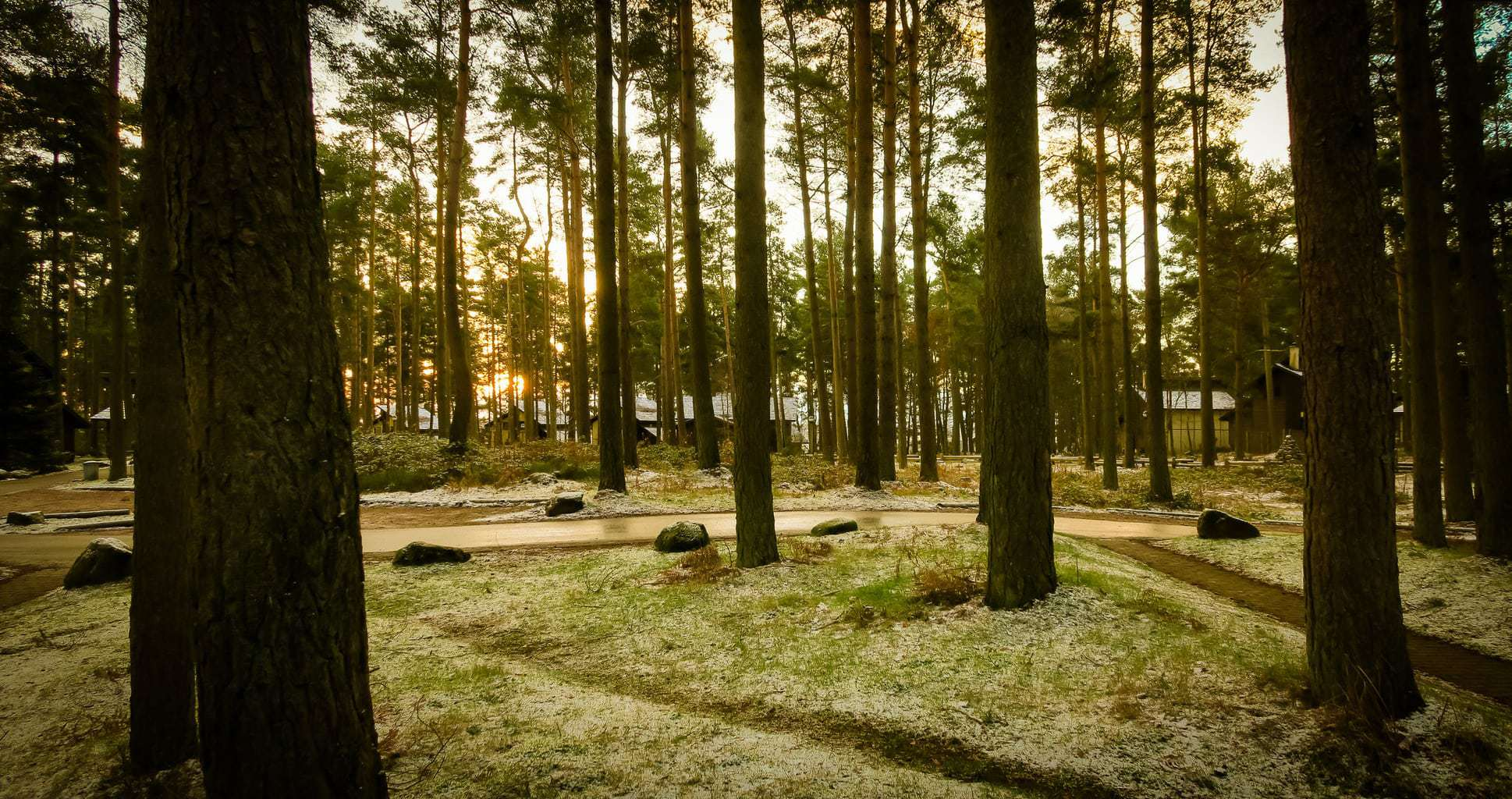 Which month is the best month to go to Center Parcs? www.minitravellers.co.uk