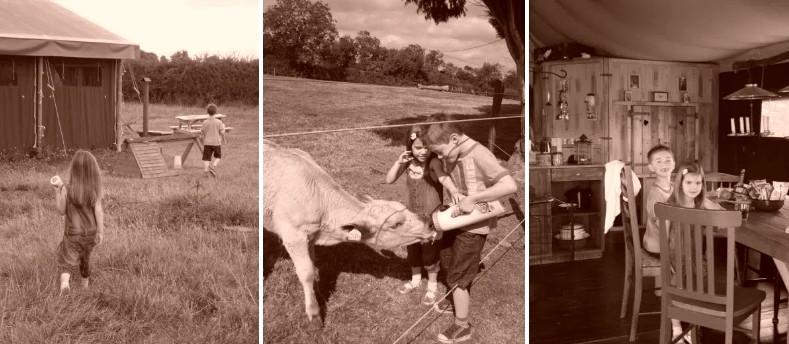 Featherdown Farm
