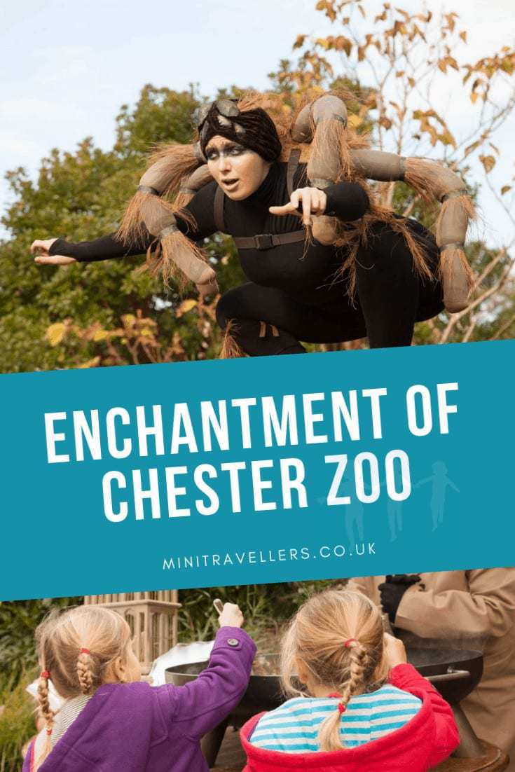 Enchantment Of Chester Zoo
