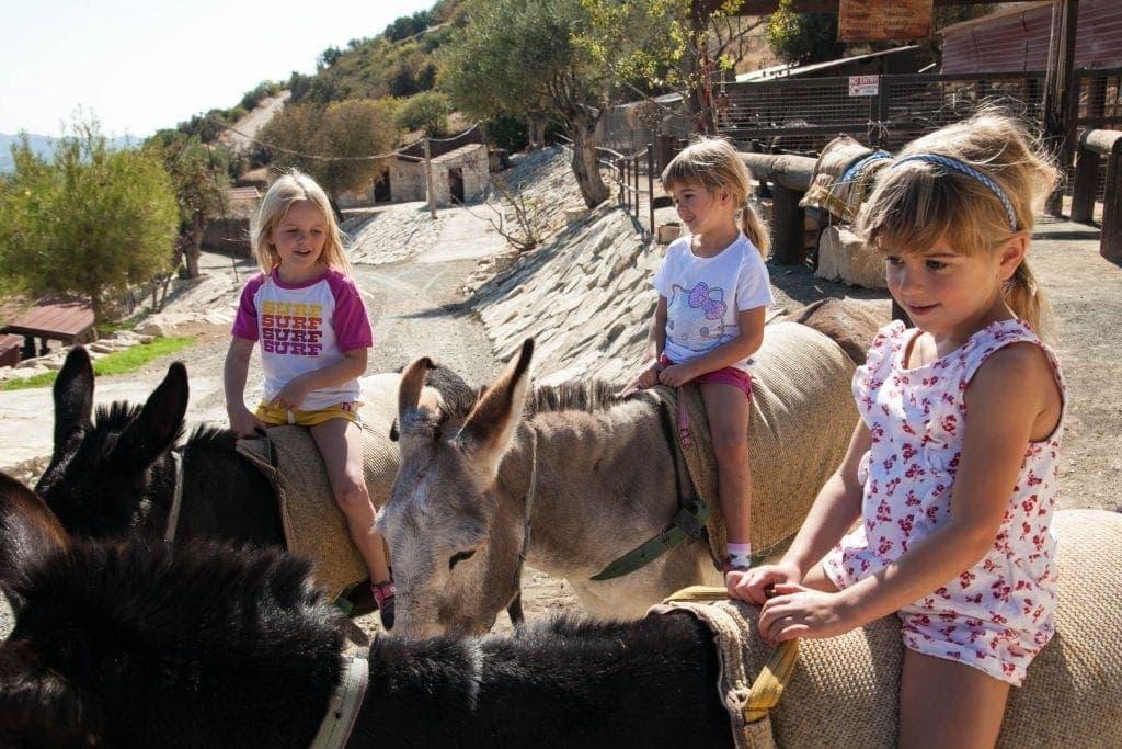 Donkey Safari at Apesia Hills Donkey Sanctuary Limassol Cyprus www.minitravellers.co.uk