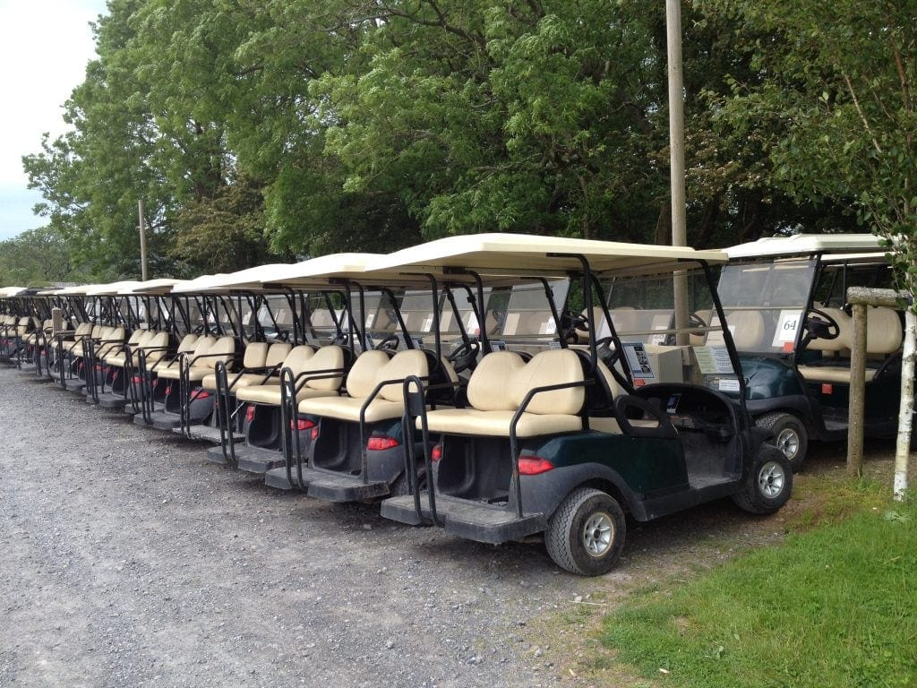 Hire a buggy for your Christmas at Bluestone National Park