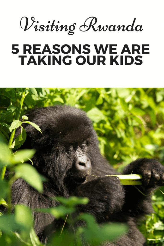 Visiting Rwanda 5 Reasons to Visit with Kids www.minitravellers.co.uk
