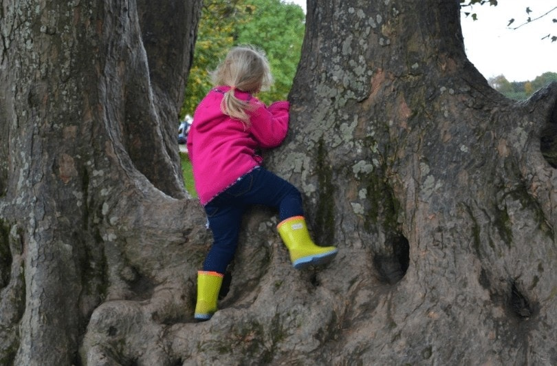 Child playing at Saltram's adventure playground, as featured in my top National Trust days out in Cornwall