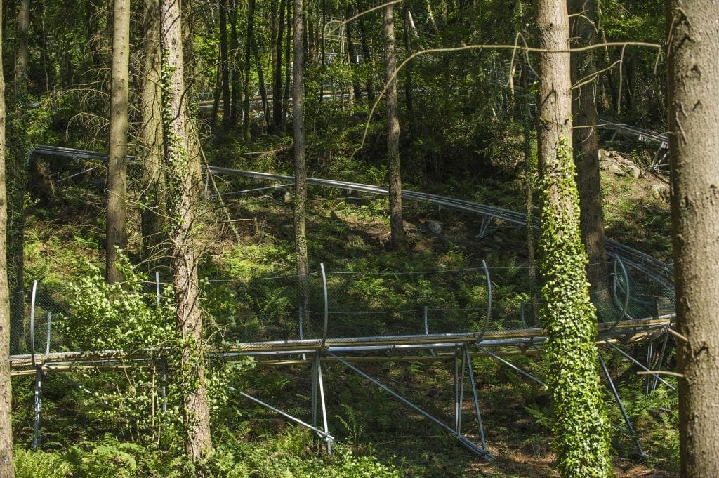 Review: Zip World | Tree Top Nets | Treehoppers | Fforest Coaster