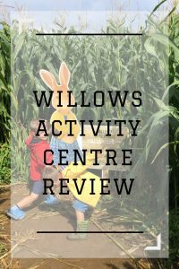 Willows Activity Centre Review