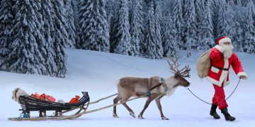 Lapland Santa and Reindeer