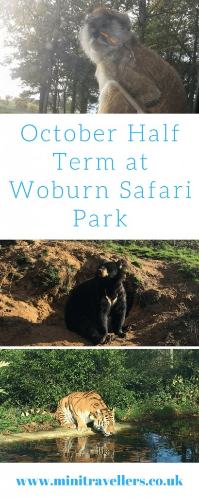 October Half Term at Woburn Safari Park
