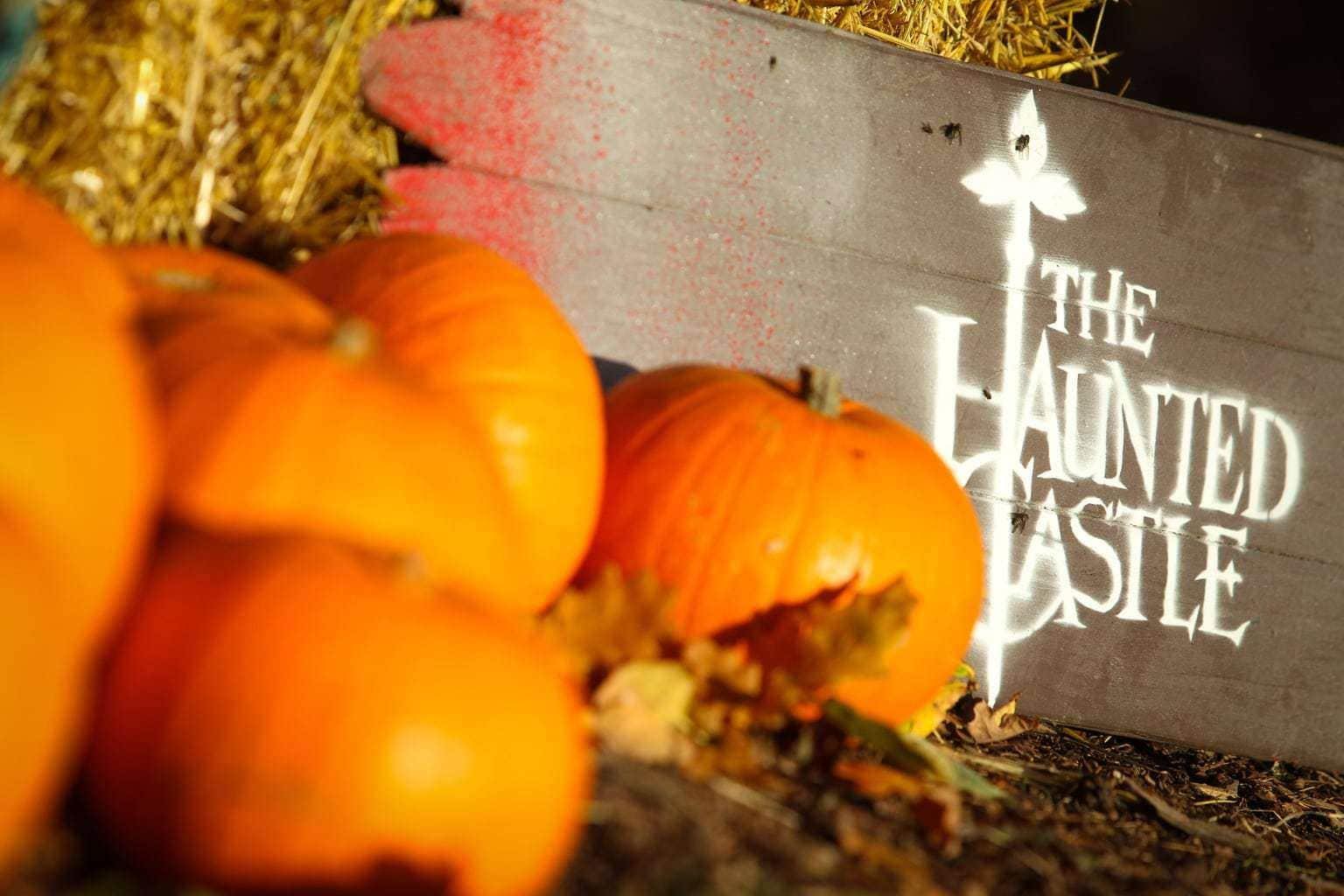 Warwick Castle's Halloween Experience