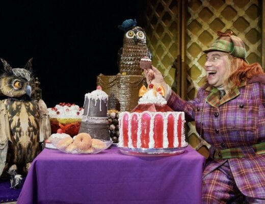 David Walliams' Awful Auntie   Richmond Theatre