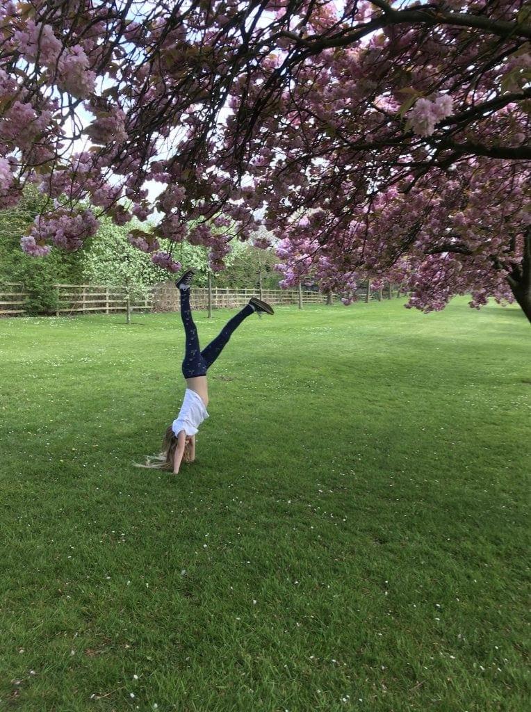 10 Things To Do In Harrogate With Kids www.minitravellers.co.uk