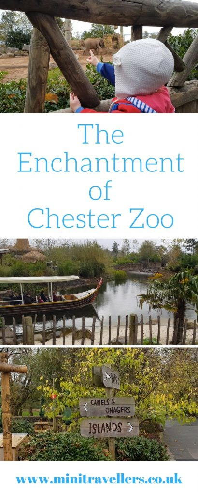 The Enchantmentof Chester Zoo