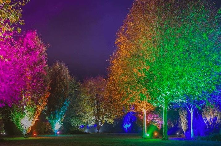 Christmas at Harlow Carr | Glow Winter Illuminations www.minitravellers.co.uk