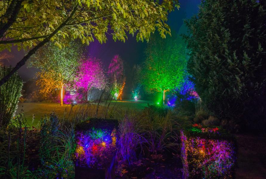 Christmas at Harlow Carr | Glow Winter Illuminations