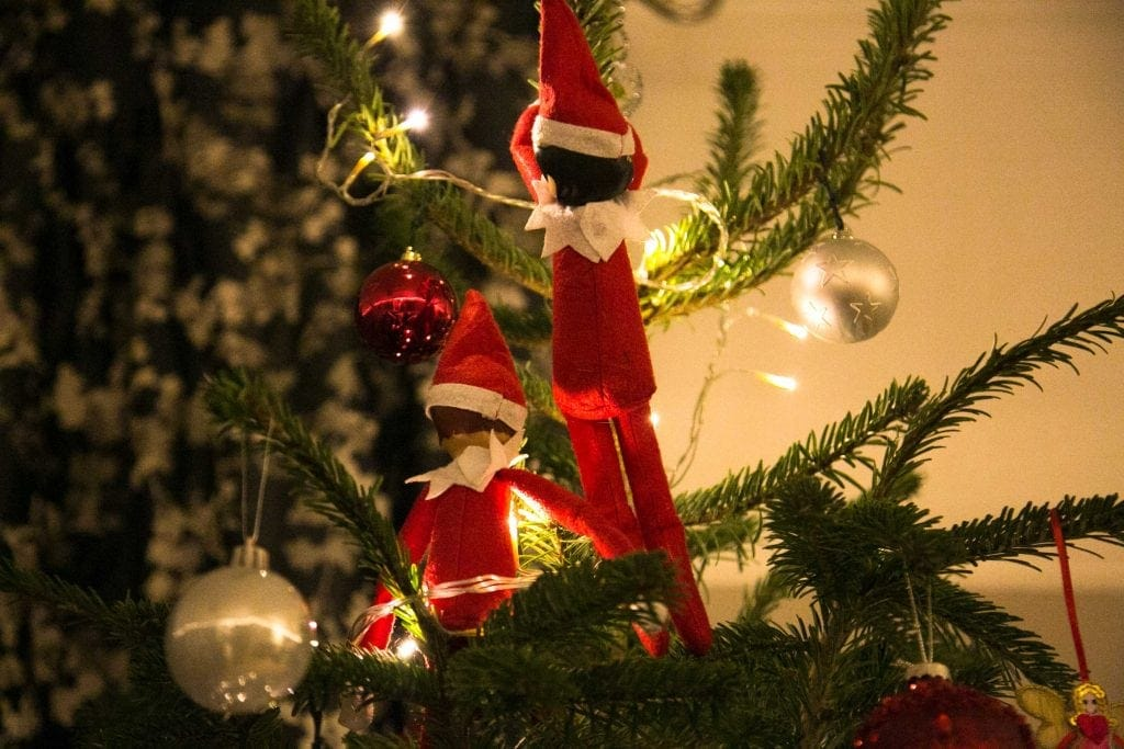 Elves hiding in the Christmas tree, ahead of a trip to Santa's Lapland for Christmas