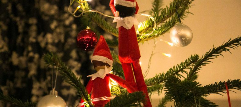 Santa's Lapland for Christmas Day www.minitravellers.co.uk