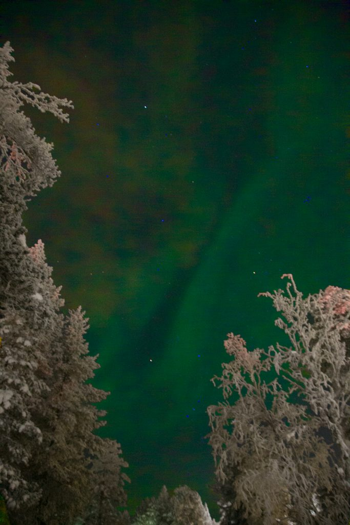 The Northern Lights - as seen on when visiting Lapland with kids