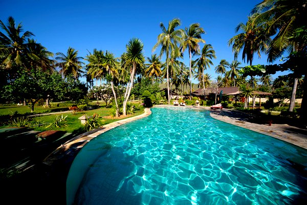 View of luxury hotel in Florida with palm trees and swimming pool.