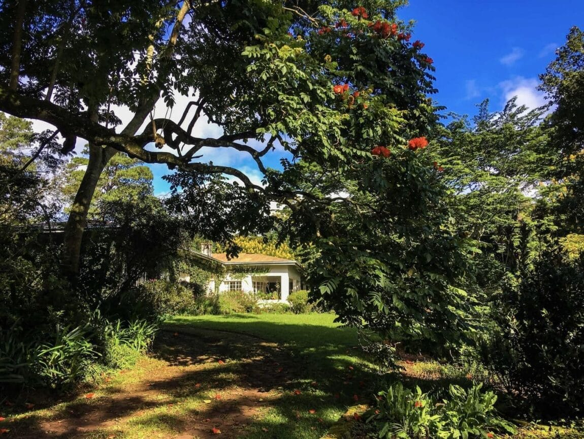 Chawani Bungalow at Satemwa Tea Estate