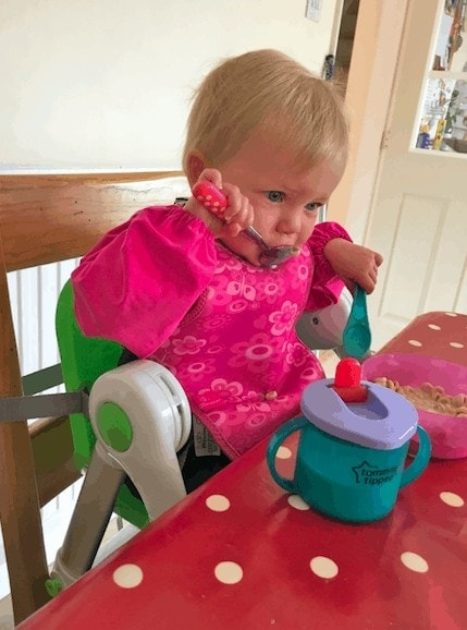 Using the Apramo Flippa dining booster seat as a highchair at home
