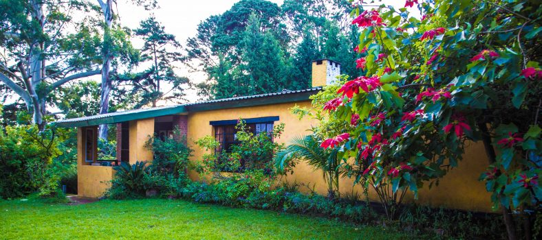 Zomba Forest Lodge with Kids