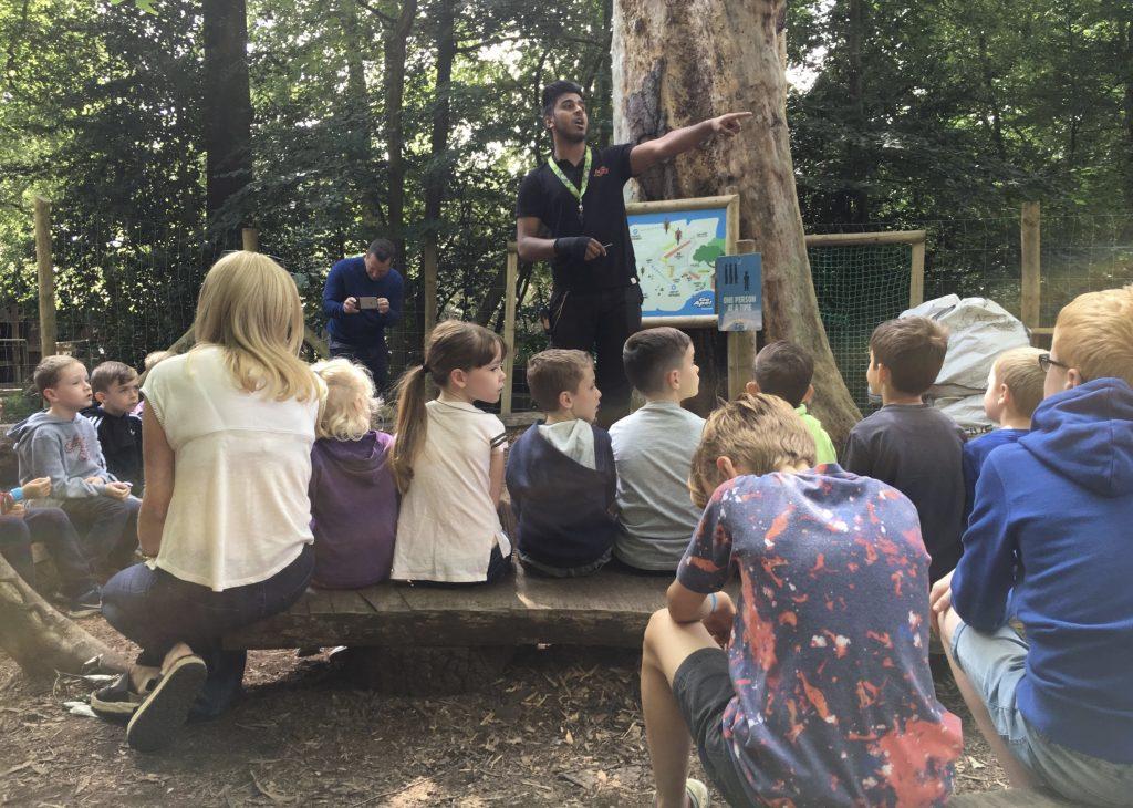 Tree Top Adventure at Go Ape Black Park, Buckinghamshire