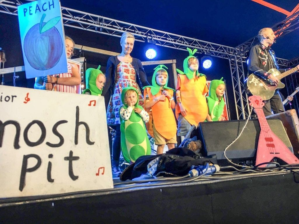 Towersey Festival Review 2018