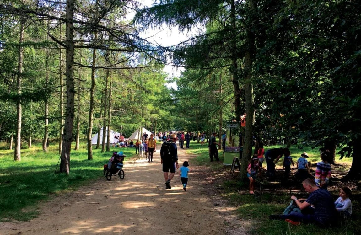 Into the Trees Festival | Family Friendly Festival