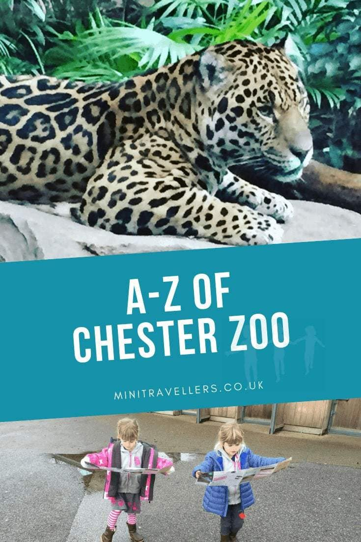 A-Z Of Chester Zoo