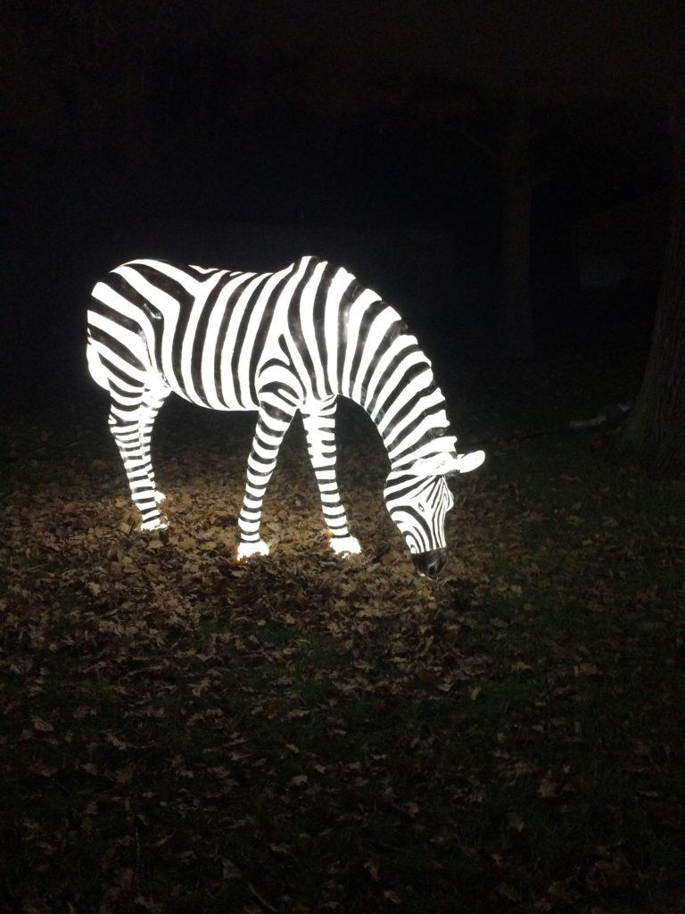 Enchanted at Knowsley Safari Park
