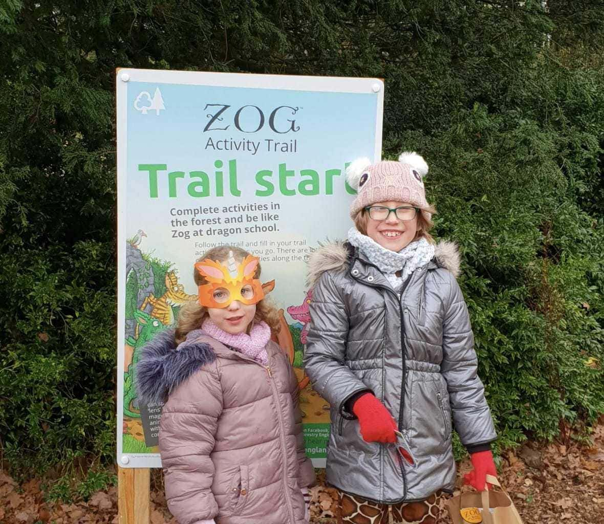 FREE Activity Trail: Zog is the new Forestry Commission Trail