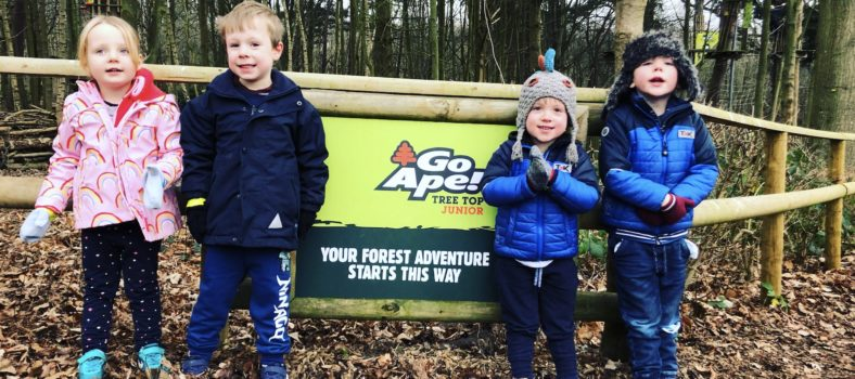 Go Ape Tree Top Junior course at Leeds Castle