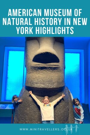 AMERICAN MUSEUM OF NATURAL HISTORY IN NEW YORK HIGHLIGHTS