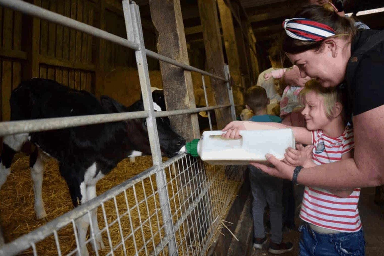 We've been to Smithills Farm so many times in the last few years and think it's a really lovely day out – with that in mind, I wanted to share thirteen things to do at Smithills Open Farm.