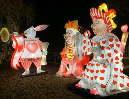 Alice in Winterland at Lightwater Valley