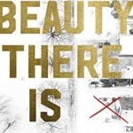 What Beauty There Is by Cory Anderson (Penguin Books)